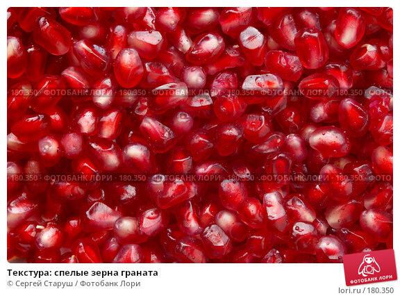 Текстура: спелые зерна граната, фото № 180350, снято 19 января 2008 г. (c) Сергей Старуш / Фотобанк Лори