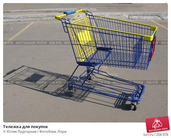 Тележка для покупок, фото № 258978, снято 21 апреля 2008 г. (c) Юлия Селезнева / Фотобанк Лори