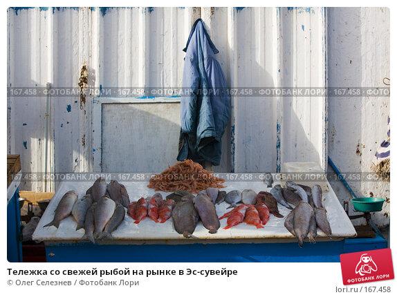 Купить «Тележка со свежей рыбой на рынке в Эс-сувейре», фото № 167458, снято 28 июля 2007 г. (c) Олег Селезнев / Фотобанк Лори