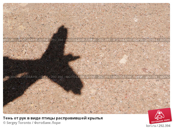 Тень от рук в виде птицы расправившей крылья, фото № 292394, снято 17 мая 2008 г. (c) Sergey Toronto / Фотобанк Лори