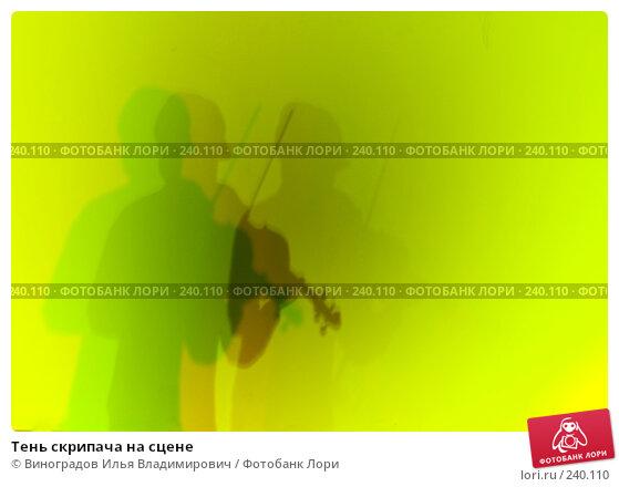 Тень скрипача на сцене, фото № 240110, снято 30 ноября 2007 г. (c) Виноградов Илья Владимирович / Фотобанк Лори