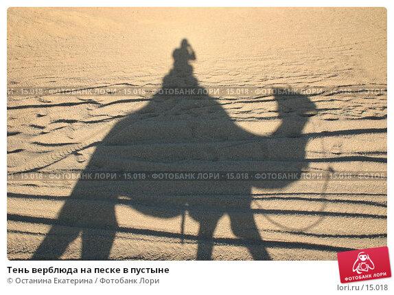 Тень верблюда на песке в пустыне , фото № 15018, снято 3 июля 2005 г. (c) Останина Екатерина / Фотобанк Лори