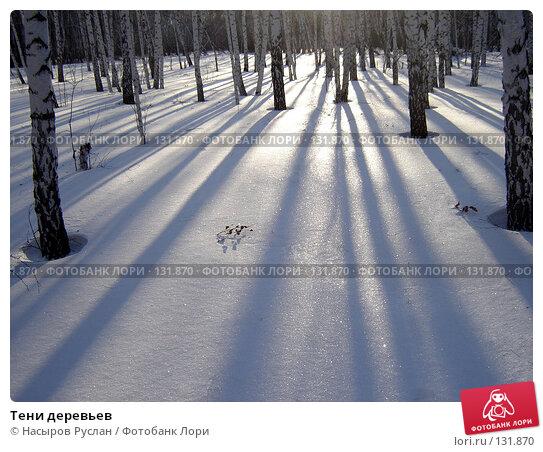 Тени деревьев, фото № 131870, снято 4 февраля 2007 г. (c) Насыров Руслан / Фотобанк Лори