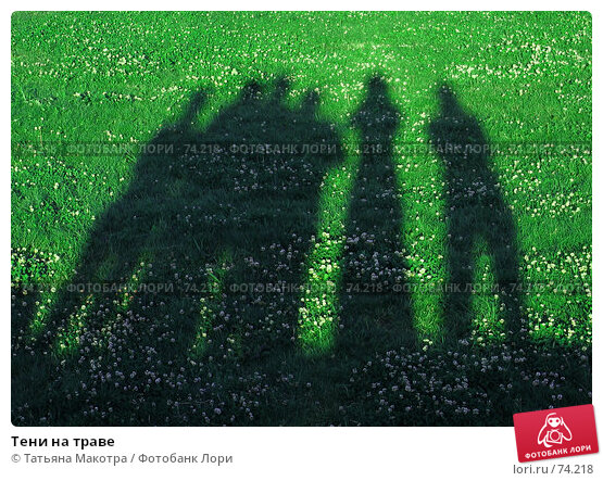 Купить «Тени на траве», фото № 74218, снято 6 июля 2005 г. (c) Татьяна Макотра / Фотобанк Лори