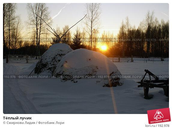 Тёплый лучик, фото № 192978, снято 4 января 2008 г. (c) Смирнова Лидия / Фотобанк Лори