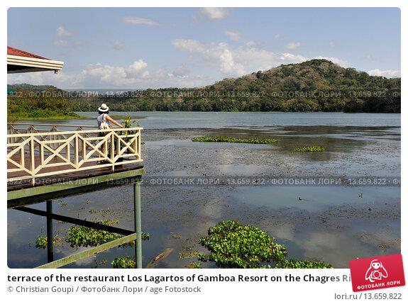 Купить «terrace of the restaurant Los Lagartos of Gamboa Resort on the Chagres River bank, Republic of Panama, Central America», фото № 13659822, снято 21 марта 2019 г. (c) age Fotostock / Фотобанк Лори