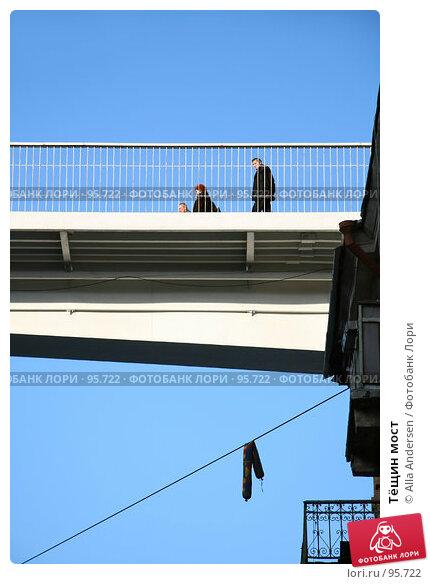 Тёщин мост, фото № 95722, снято 14 января 2007 г. (c) Alla Andersen / Фотобанк Лори