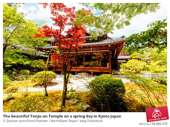 The beautiful Tenju-an Temple on a spring day in Kyoto Japan. Стоковое фото, фотограф Zoonar.com/Chris Putnam / easy Fotostock / Фотобанк Лори
