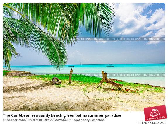 The Caribbean sea sandy beach green palms summer paradise. Стоковое фото, фотограф Zoonar.com/Dmitriy Bruskov / easy Fotostock / Фотобанк Лори