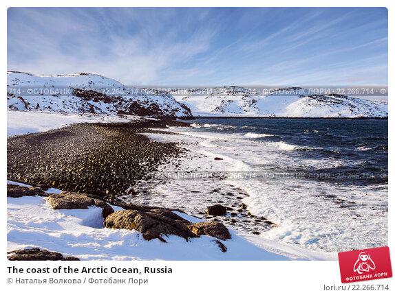 The coast of the Arctic Ocean, Russia, фото № 22266714, снято 11 марта 2016 г. (c) Наталья Волкова / Фотобанк Лори