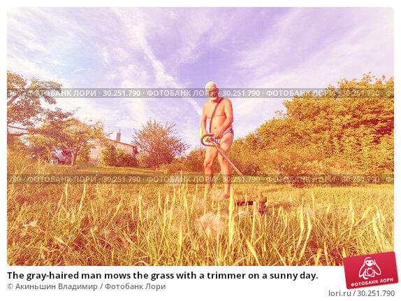 Купить «The gray-haired man mows the grass with a trimmer on a sunny day.», фото № 30251790, снято 17 августа 2016 г. (c) Акиньшин Владимир / Фотобанк Лори