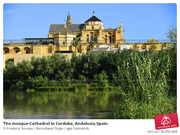 The mosque-Cathedral in Cordoba, Andalusia,Spain. Стоковое фото, фотограф Frederic Soreau / age Fotostock / Фотобанк Лори