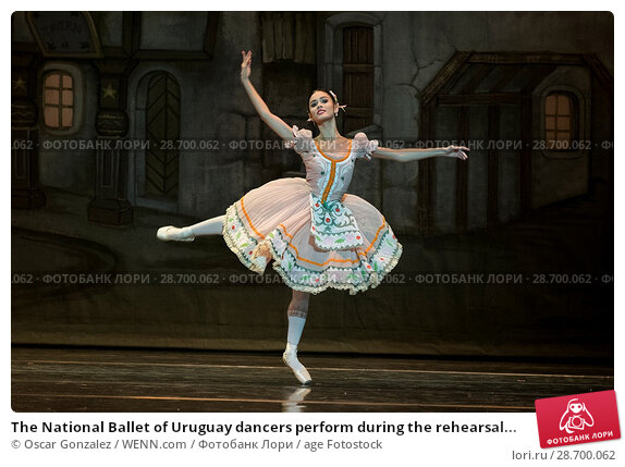 Купить «The National Ballet of Uruguay dancers perform during the rehearsal of 'Coppelia' at El Canal Theatre in Madrid Featuring: Atmosphere Where: Madrid, Spain...», фото № 28700062, снято 27 декабря 2016 г. (c) age Fotostock / Фотобанк Лори