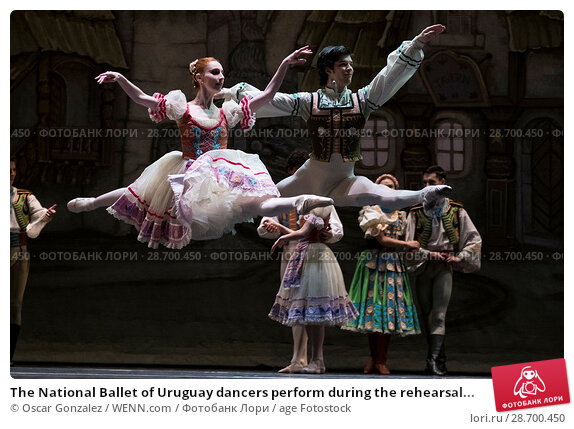 Купить «The National Ballet of Uruguay dancers perform during the rehearsal of 'Coppelia' at El Canal Theatre in Madrid Featuring: Atmosphere Where: Madrid, Spain...», фото № 28700450, снято 27 декабря 2016 г. (c) age Fotostock / Фотобанк Лори