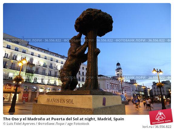 The Oso y el Madroño at Puerta del Sol at night, Madrid, Spain. Стоковое фото, фотограф Luis Fidel Ayerves / age Fotostock / Фотобанк Лори