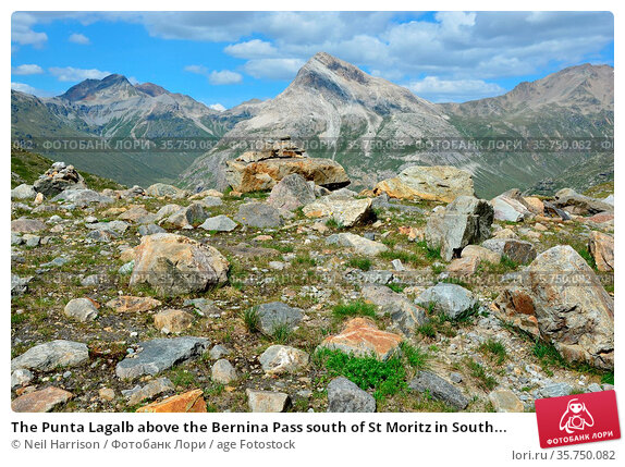 The Punta Lagalb above the Bernina Pass south of St Moritz in South... Стоковое фото, фотограф Neil Harrison / age Fotostock / Фотобанк Лори