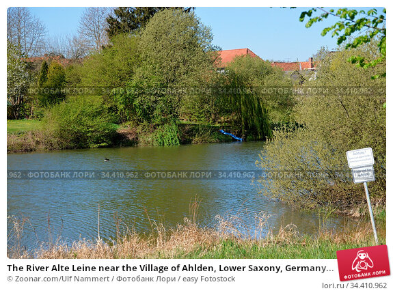 The River Alte Leine near the Village of Ahlden, Lower Saxony, Germany... Стоковое фото, фотограф Zoonar.com/Ulf Nammert / easy Fotostock / Фотобанк Лори