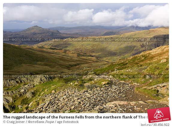 The rugged landscape of the Furness Fells from the northern flank of The Old Man of Coniston in the Lake District National Park, Cumbria, England. Стоковое фото, фотограф Craig Joiner / age Fotostock / Фотобанк Лори