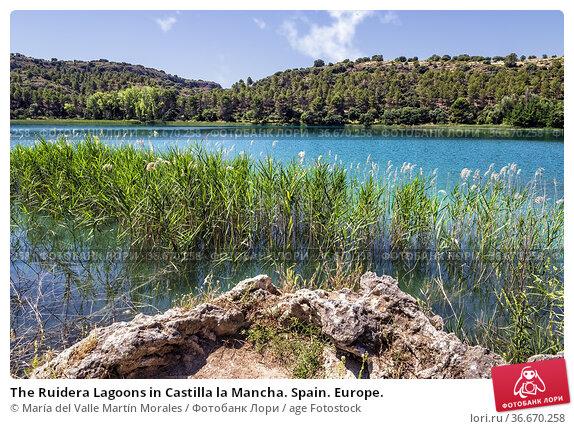 The Ruidera Lagoons in Castilla la Mancha. Spain. Europe. Стоковое фото, фотограф María del Valle Martín Morales / age Fotostock / Фотобанк Лори