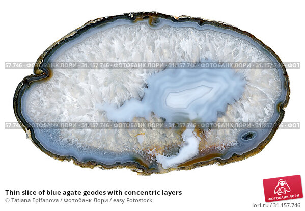Thin slice of blue agate geodes with concentric layers. Стоковое фото, фотограф Tatiana Epifanova / easy Fotostock / Фотобанк Лори