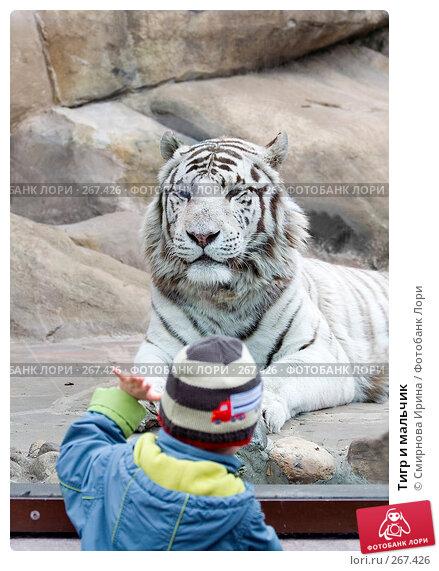 Тигр и мальчик, фото № 267426, снято 8 апреля 2008 г. (c) Смирнова Ирина / Фотобанк Лори