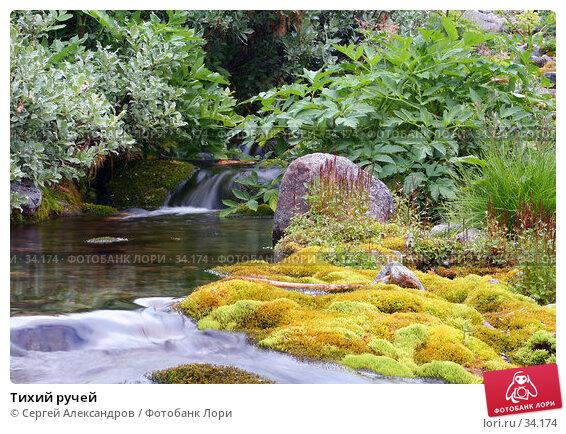 Купить «Тихий ручей», фото № 34174, снято 2 августа 2005 г. (c) Сергей Александров / Фотобанк Лори