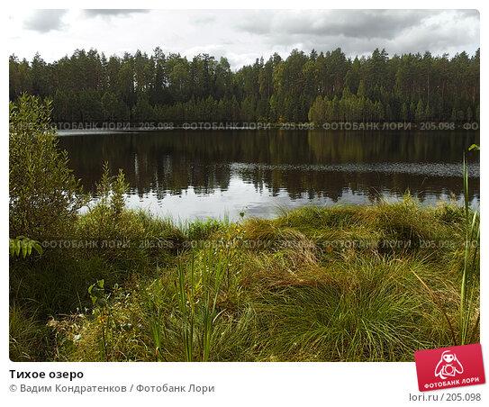 Тихое озеро, фото № 205098, снято 25 мая 2017 г. (c) Вадим Кондратенков / Фотобанк Лори