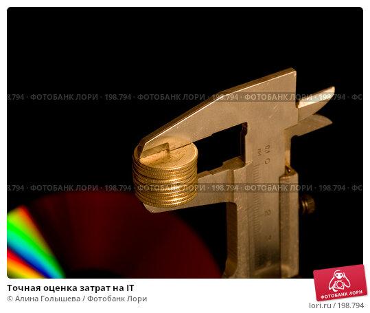 Точная оценка затрат на IT, эксклюзивное фото № 198794, снято 9 февраля 2008 г. (c) Алина Голышева / Фотобанк Лори
