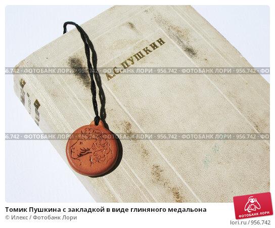 томик пушкина картинки для или деревенский стиль