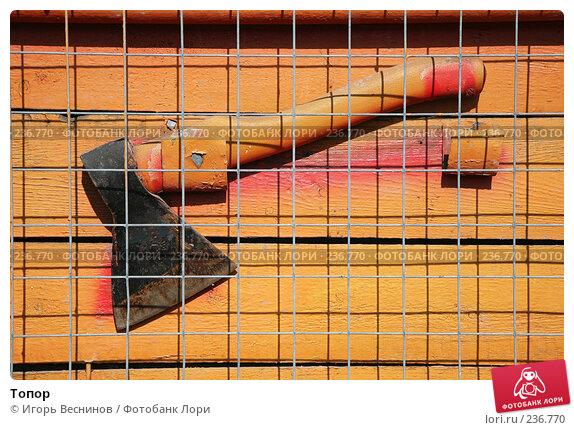 Топор, фото № 236770, снято 29 марта 2008 г. (c) Игорь Веснинов / Фотобанк Лори