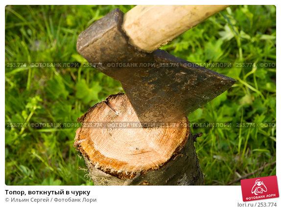 Купить «Топор, воткнутый в чурку», фото № 253774, снято 12 июня 2007 г. (c) Ильин Сергей / Фотобанк Лори