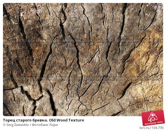 Торец старого бревна. Old Wood Texture, фото № 134770, снято 2 октября 2005 г. (c) Serg Zastavkin / Фотобанк Лори