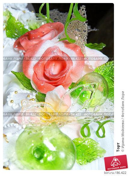 Купить «Торт», эксклюзивное фото № 86422, снято 8 сентября 2007 г. (c) Ирина Мойсеева / Фотобанк Лори