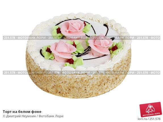 Торт на белом фоне, эксклюзивное фото № 251578, снято 24 декабря 2007 г. (c) Дмитрий Неумоин / Фотобанк Лори