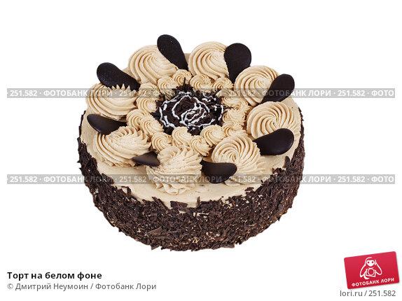 Купить «Торт на белом фоне», эксклюзивное фото № 251582, снято 24 декабря 2007 г. (c) Дмитрий Неумоин / Фотобанк Лори