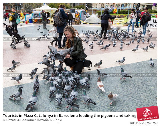 Купить «Tourists in Plaza Catalunya in Barcelona feeding the pigeons and taking pictures of them. Spain», фото № 29752750, снято 7 апреля 2018 г. (c) Наталья Волкова / Фотобанк Лори