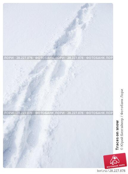Купить «Traces on snow», фото № 28227878, снято 20 марта 2014 г. (c) Юрий Бизгаймер / Фотобанк Лори