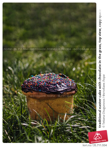 traditional easter cake with chocolate in the grass, top view, copy space. Стоковое фото, фотограф Tetiana Chugunova / Фотобанк Лори