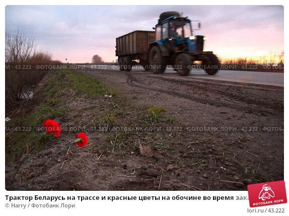 Трактор Беларусь на трассе и красные цветы на обочине во время заката, фото № 43222, снято 6 июня 2005 г. (c) Harry / Фотобанк Лори
