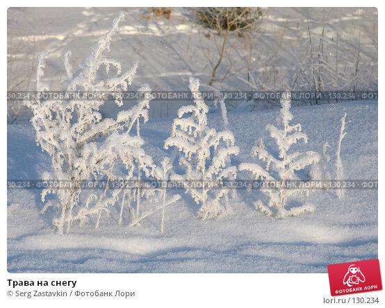 Трава на снегу, фото № 130234, снято 18 декабря 2005 г. (c) Serg Zastavkin / Фотобанк Лори