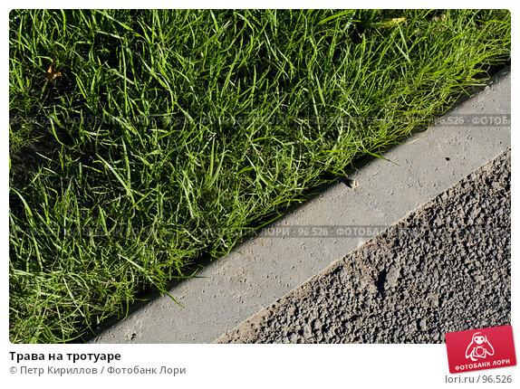 Трава на тротуаре, фото № 96526, снято 10 октября 2007 г. (c) Петр Кириллов / Фотобанк Лори