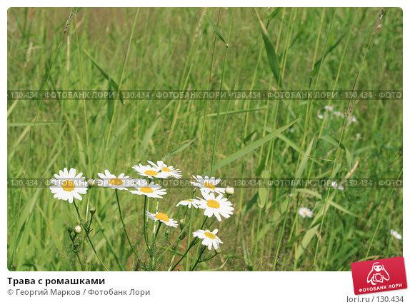 Трава с ромашками, фото № 130434, снято 3 июля 2007 г. (c) Георгий Марков / Фотобанк Лори