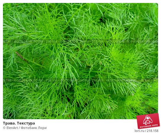Трава. Текстура, фото № 218158, снято 26 марта 2017 г. (c) ElenArt / Фотобанк Лори