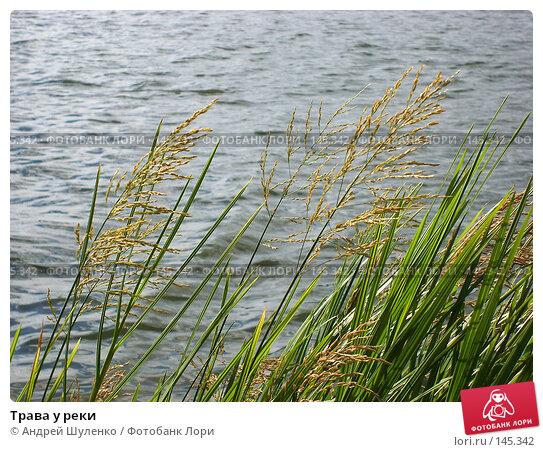 Трава у реки, фото № 145342, снято 1 сентября 2007 г. (c) Андрей Шуленко / Фотобанк Лори