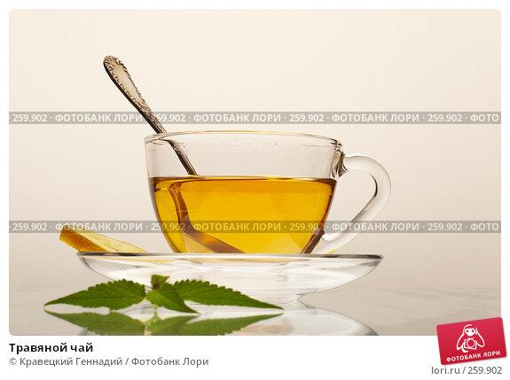 Травяной чай, фото № 259902, снято 22 июля 2005 г. (c) Кравецкий Геннадий / Фотобанк Лори