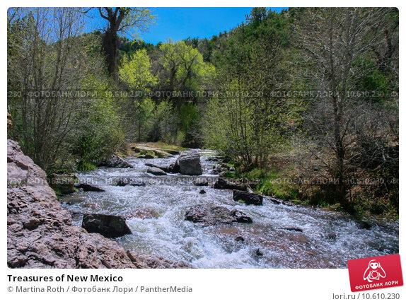 Treasures of New Mexico. Стоковое фото, фотограф Martina Roth / PantherMedia / Фотобанк Лори