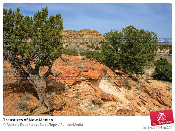 Купить «Treasures of New Mexico», фото № 10610294, снято 27 мая 2019 г. (c) PantherMedia / Фотобанк Лори