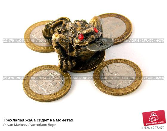Трехлапая жаба сидит на монетах, фото № 227470, снято 19 марта 2008 г. (c) Василий Каргандюм / Фотобанк Лори