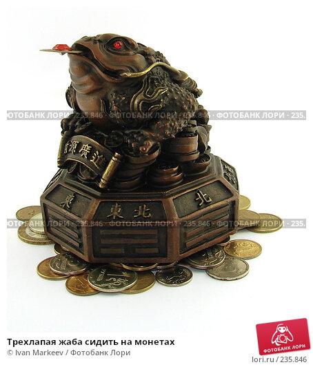 Трехлапая жаба сидить на монетах, фото № 235846, снято 25 марта 2017 г. (c) Василий Каргандюм / Фотобанк Лори