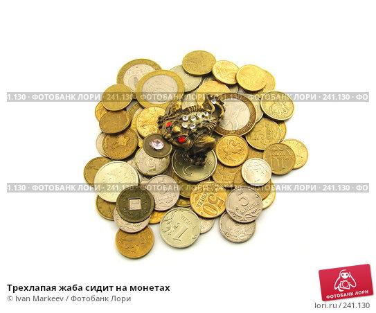 Купить «Трехлапая жаба сидит на монетах», фото № 241130, снято 22 апреля 2018 г. (c) Ivan Markeev / Фотобанк Лори